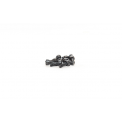 HEX HEAD CAP SCREWS 3X8 (...