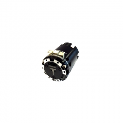 TESLA BRUSHLESS MOTOR 13.5...